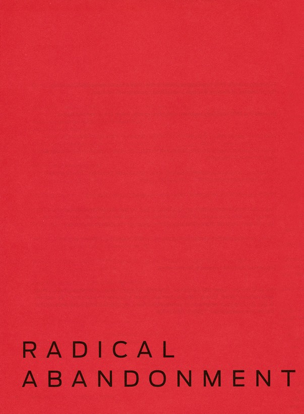 Radical Small Group Study Member Book