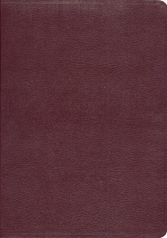 KJV Ryrie Study Bible Burgundy Bonded Leather Red Letter Thumb-Indexed