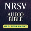 Hendrickson NRSV Audio Bible: Old Testament [Download]