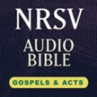 Hendrickson NRSV Audio Bible: Gospels & Acts [Download]