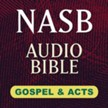 Hendrickson NASB Audio Bible: Gospels & Acts [Download]