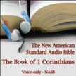 The Book of 1st Corinthians: The Voice Only New American Standard Bible (NASB) [Download]