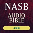 NASB Audio Bible: Job (Voice Only) [Download]