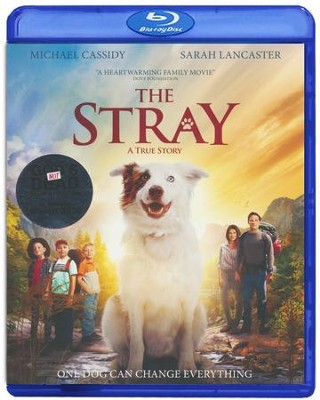 The Stray, Blu-ray/DVD Combo   -