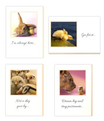 Funny Animals, Encouragement Cards, Box of 12  -     By: Chiara Castellini