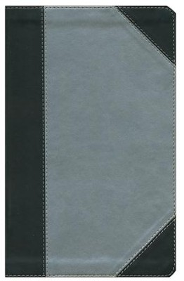 NKJV Ultraslim Bible, Imitation Leather, Silver Shimmer  -
