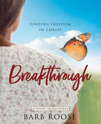 Breakthrough: Finding Freedom in Christ Participant Workbook  -     By: Barb Roose