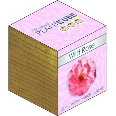 Ecofriendly Plant Cube, Indoor Grow Kit, Wild Rose  -
