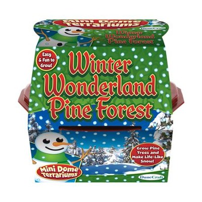 Winter Wonderland Pine Forest, Mini Dome Terrarium Kit  -