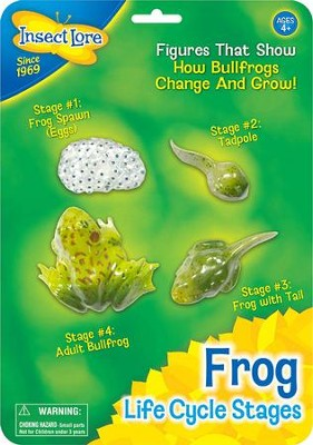 Frog Life Cycle Stages Figurines  -
