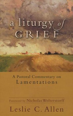 A Liturgy of Grief: A Pastoral Commentary on Lamentations  -     By: Leslie C. Allen
