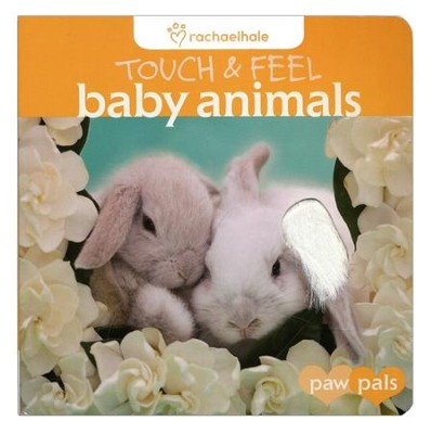 Touch & Feel: Baby Animals  -     By: Rachael Hale