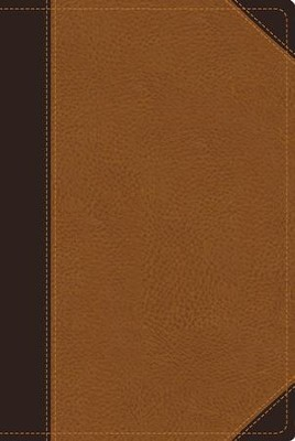 NIV Zondervan Study Bible--soft leather-look, chocolate/caramel  -     Edited By: D.A. Carson     By: D. A. Carson