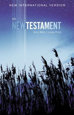 NIV Large-Print Outreach New Testament--softcover, blue wheat  -