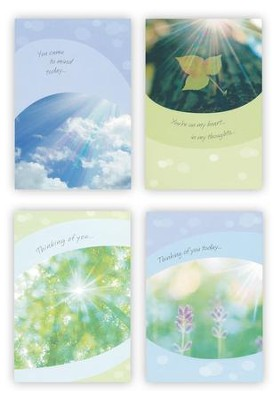 Sunny Sentiments Thinking of You Cards, Box of 12  -