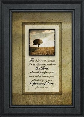 For I Know the Plans I Have For You Framed Art  -