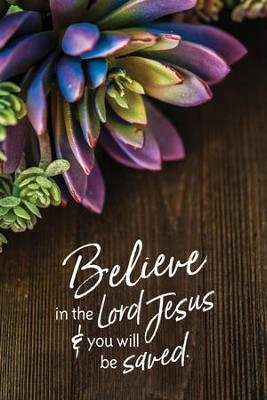 Believe in the Lord Jesus & You Will Be Saved Plaque  -