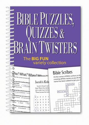 Bible Puzzles, Quizzes, and Brain Twisters  -