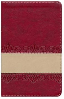 The KJV Prophecy Study Bible, Leather, imitation Red/Tan  -     By: Christopher D. Hudson