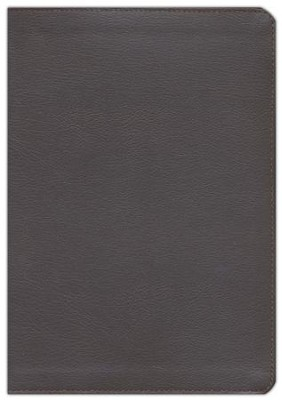 KJV Reference Study Bible, Imitation Leather burgundy   -     By: Christopher Hudson