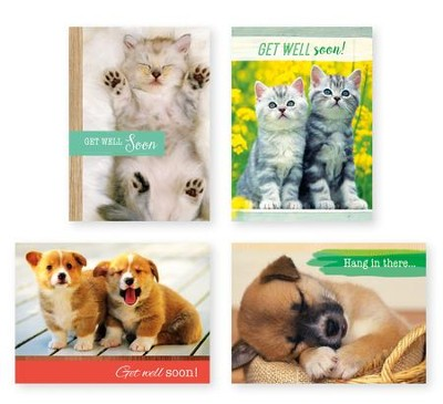 Puppies and Kittens Get Well Cards, Box of 12  -