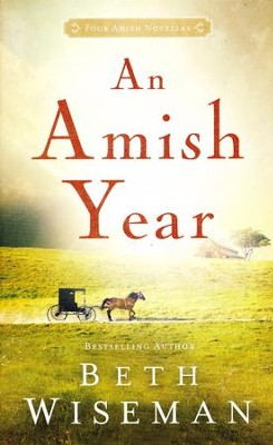 An Amish Year  -     By: Beth Wiseman
