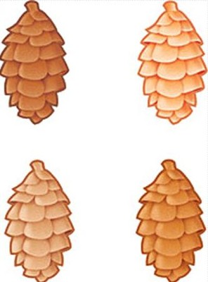 Pinecones Classic Accents Variety Pack  -