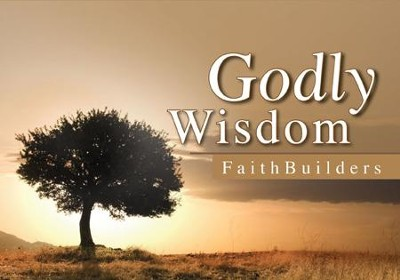 Faithbuilders Devotional Cards, Godly Wisdom  -