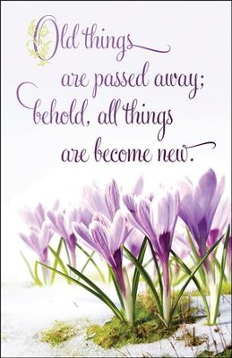 All Things Become New, Bulletins, 100-Pack   -