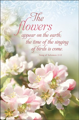 The Flowers Appear (Song of Solomon 2:12) Bulletins, 100  -