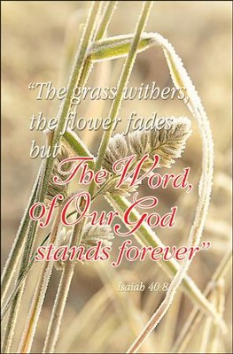 The Word of Our God Stands Forever (Isaiah 40:8, NKJV) Bulletins, 100  -