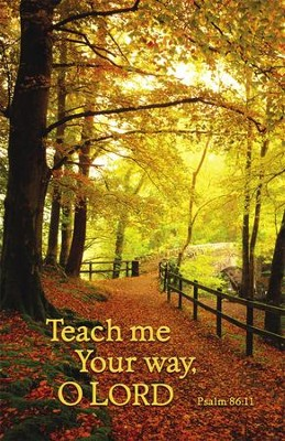 Teach Me Your Way (Psalm 86:11)   -