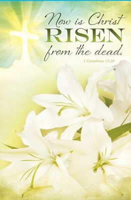Risen from the Dead (1 Corinthians 15:20) Bulletins, 100  -