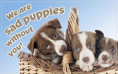 Sad Puppies/Thinking of You Postcards (Ps. 150:6), 25  -