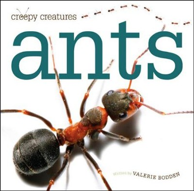 Creepy Creatures: Ants  -     By: Valerie Bodden