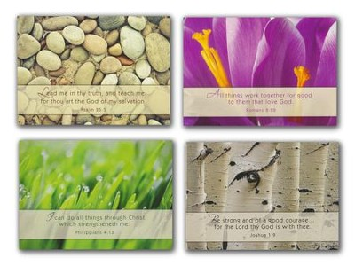 Nature's Splendor (KJV) Box of 12 Assorted Encouragement Cards  -