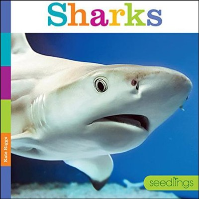 Seedlings: Sharks  -     By: Kate Riggs