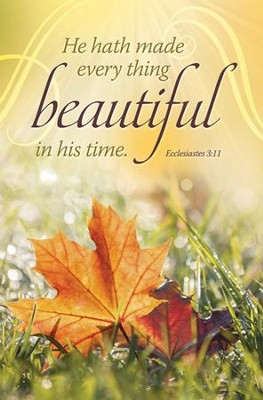 In His Time (Ecclesiastes 3:11) Bulletins, 100  -