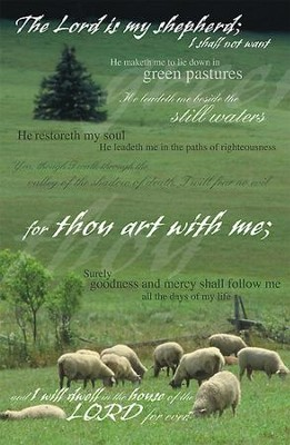 Psalm 23 Sheep and Pine Tree, Pack of 50 Bulletins  -