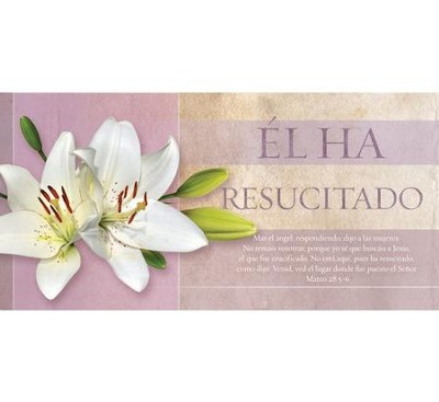 No esta aqui, pues ha resucitado Sobres (He Is Not Here For He Offering Envelopes), 100  -