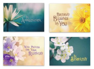 Beautiful Blossom (KJV) Box of 12 All Occasion Cards  -