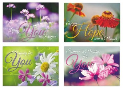 In My Prayers (NIV) Box of 12 Praying for You Cards  -