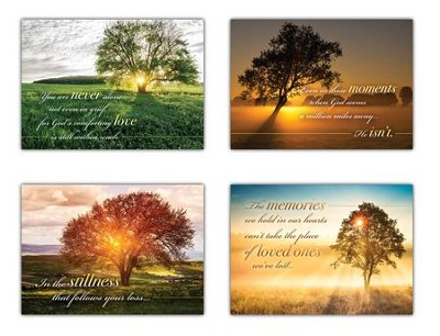 Be Still and Know (NIV) Box of 12 Sympathy Cards  -
