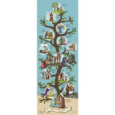 Bible Family Tree Poster (14 inch x 39 inch)  -