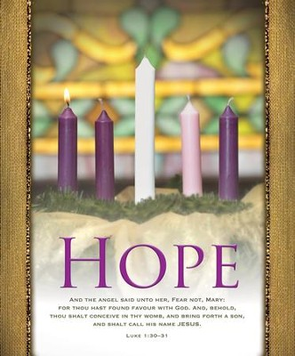 Hope (Luke 1:30-31, KJV) Large Bulletins, 100   -