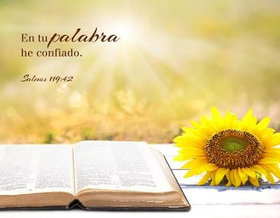 En tu palabra (Salmos 119:42) Lienzo/Small Canvas Art  -