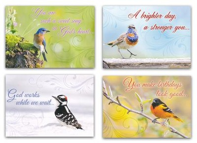 Cheerful Chirps (NIV) Box of 12 All Occasion Cards  -