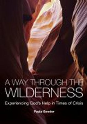 A Way Through the Wilderness: Experiencing God's Help in Times of Crisis  -     By: Paula Gooder