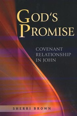 God's Promise: Covenant Relationship in John   -     By: Sherri Brown