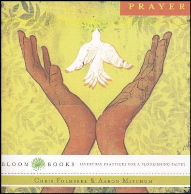 The Practice of Prayer- pamphlet  -     By: Aaron Mitchum, Chris Folmsbee